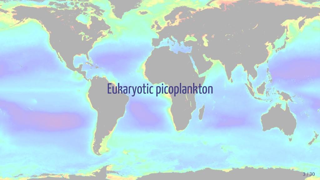 Eukaryotic picoplankton 3 / 30