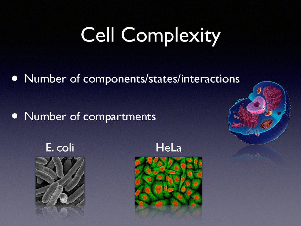• Number of compartments Cell Complexity E. col...