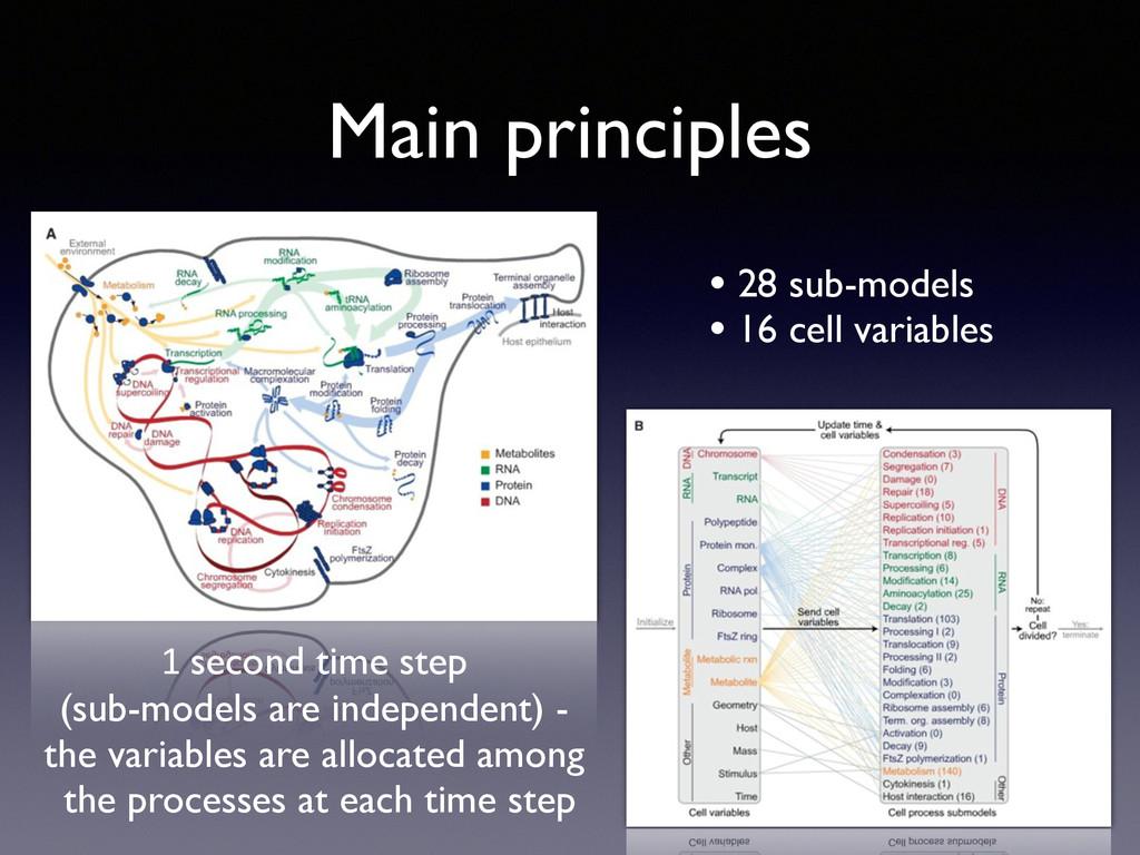 Main principles • 28 sub-models  • 16 cell va...