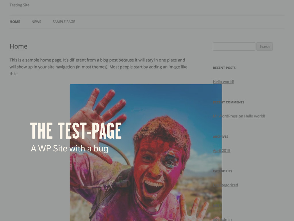 THE TEST-PAGE A WP Site with a bug