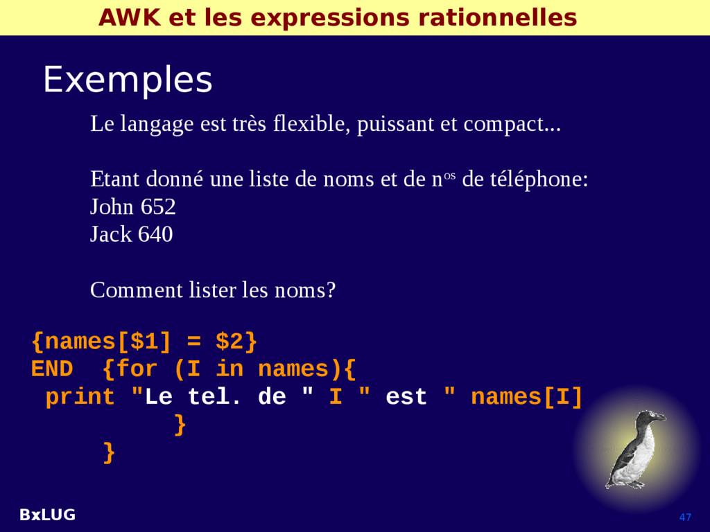 BxLUG 47 AWK et les expressions rationnelles Ex...