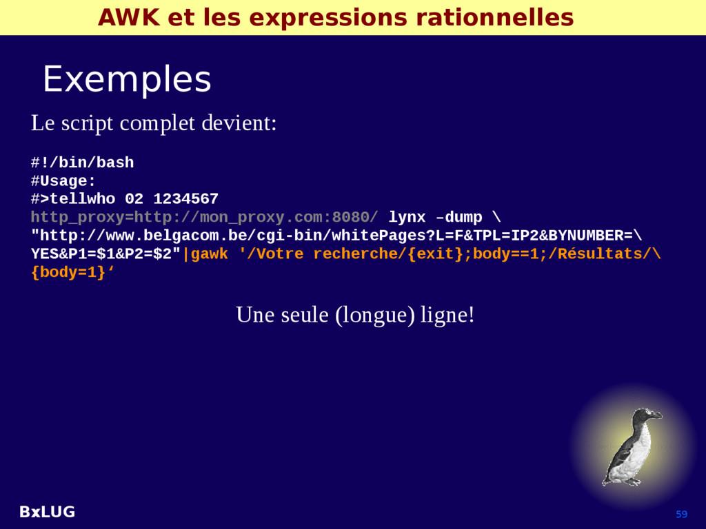 BxLUG 59 AWK et les expressions rationnelles Ex...