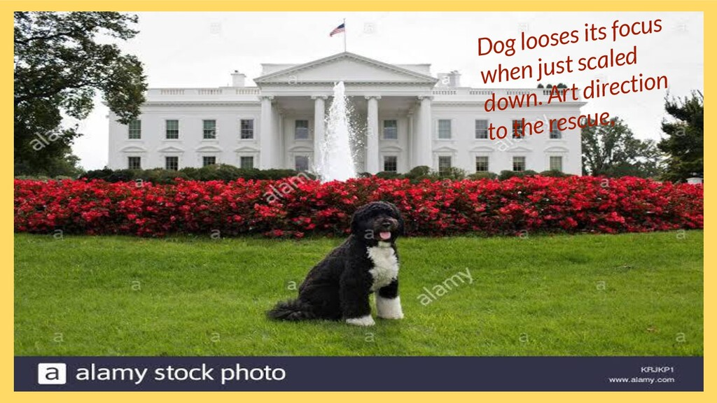 Dog looses its focus when just scaled down. Art...