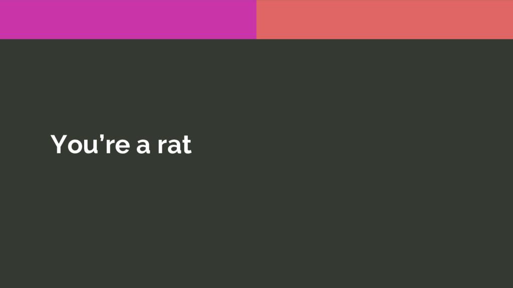 You're a rat