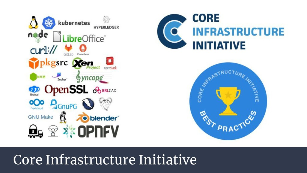 Core Infrastructure Initiative