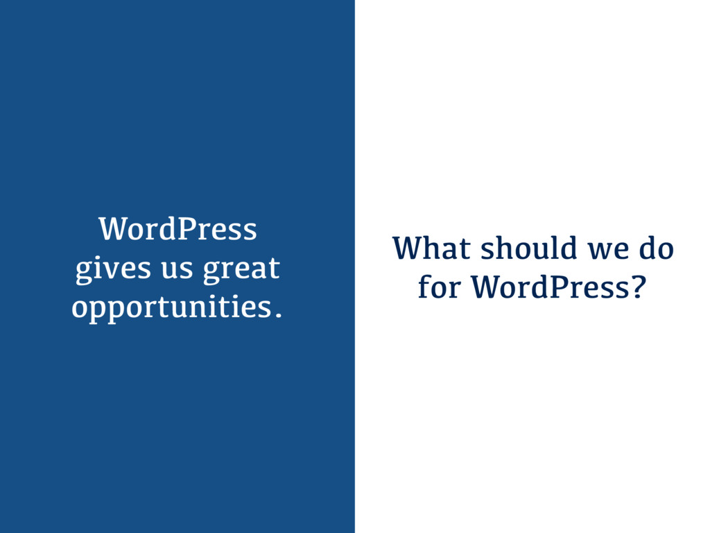 WordPress gives us great opportunities. What sh...