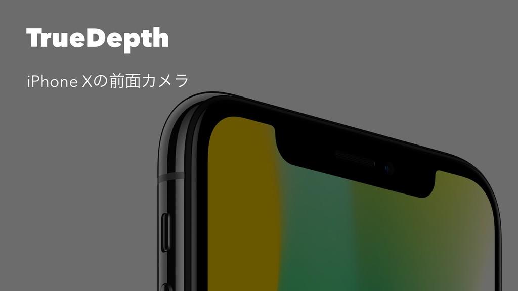 TrueDepth iPhone Xͷલ໘Χϝϥ