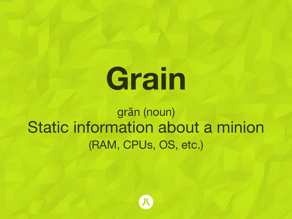 Grain grān (noun) Static information about a mi...