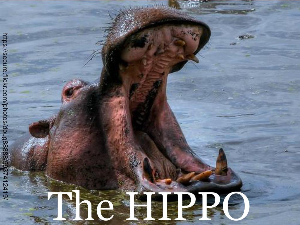 The HIPPO https://secure.flickr.com/photos/doug...