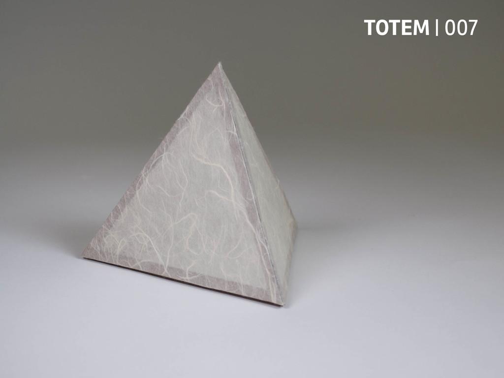 TOTEM   007