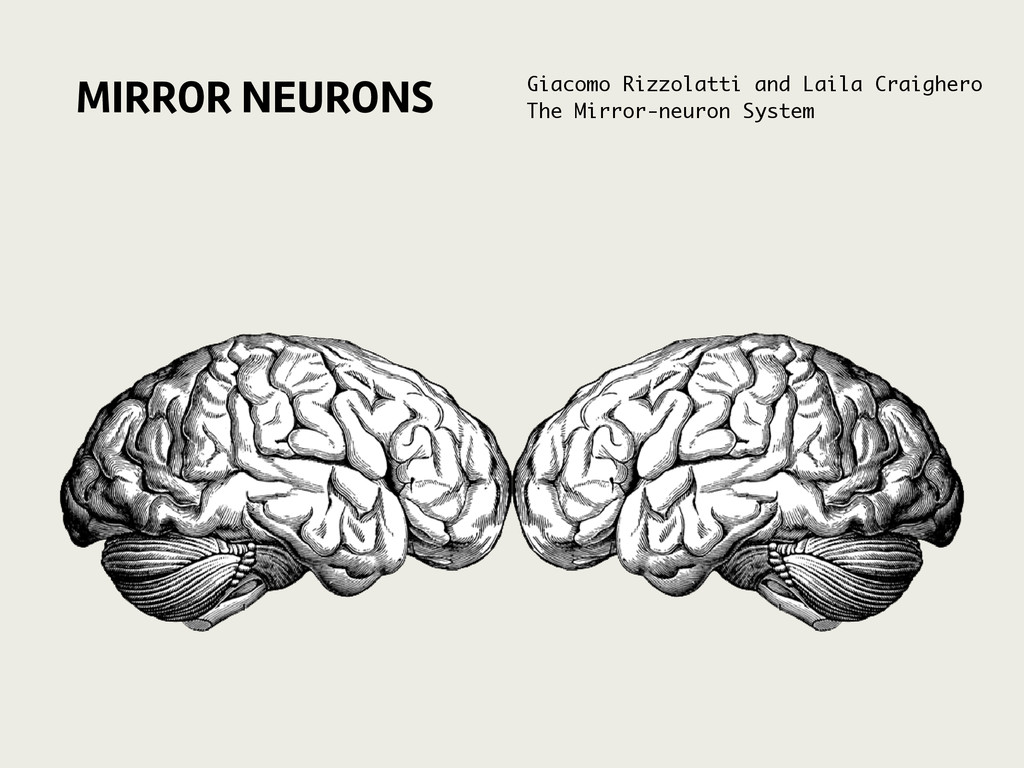 MIRROR NEURONS Giacomo Rizzolatti and Laila Cra...
