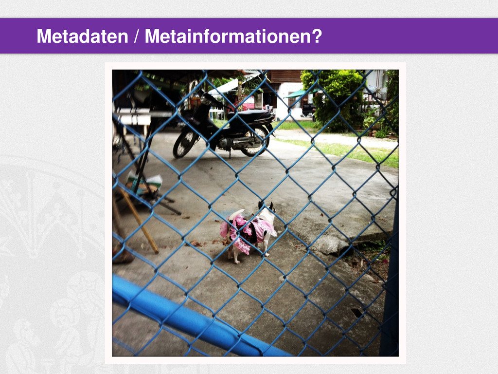 Metadaten / Metainformationen?