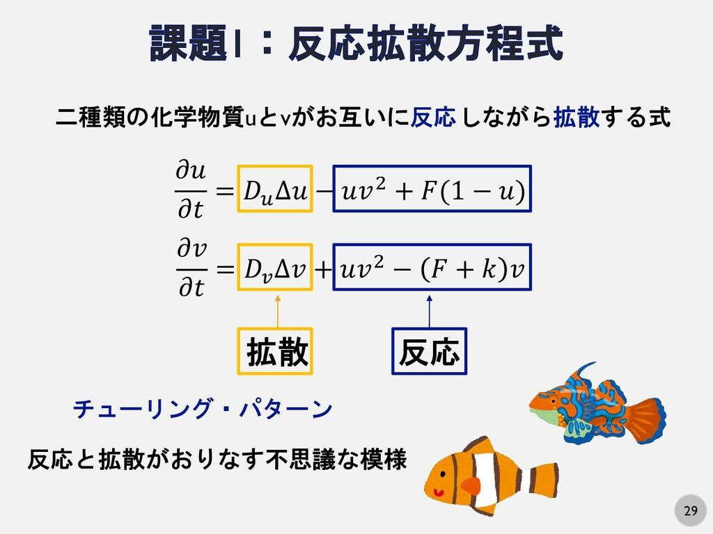 29 二種類の化学物質uとvがお互いに反応しながら拡散する式   =  ∆ − 2 + (1 ...