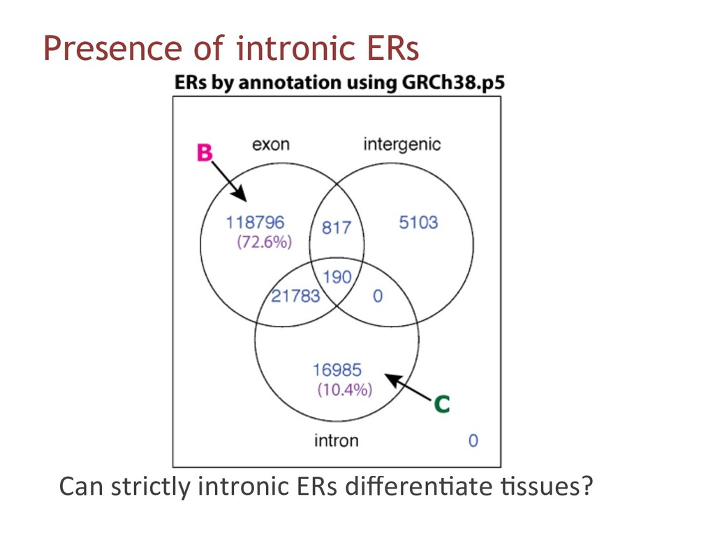 Presence of intronic ERs Can strictly intronic ...