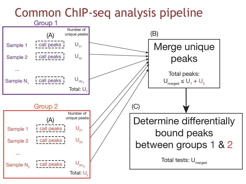 Common ChIP-seq analysis pipeline Sample 1 Samp...