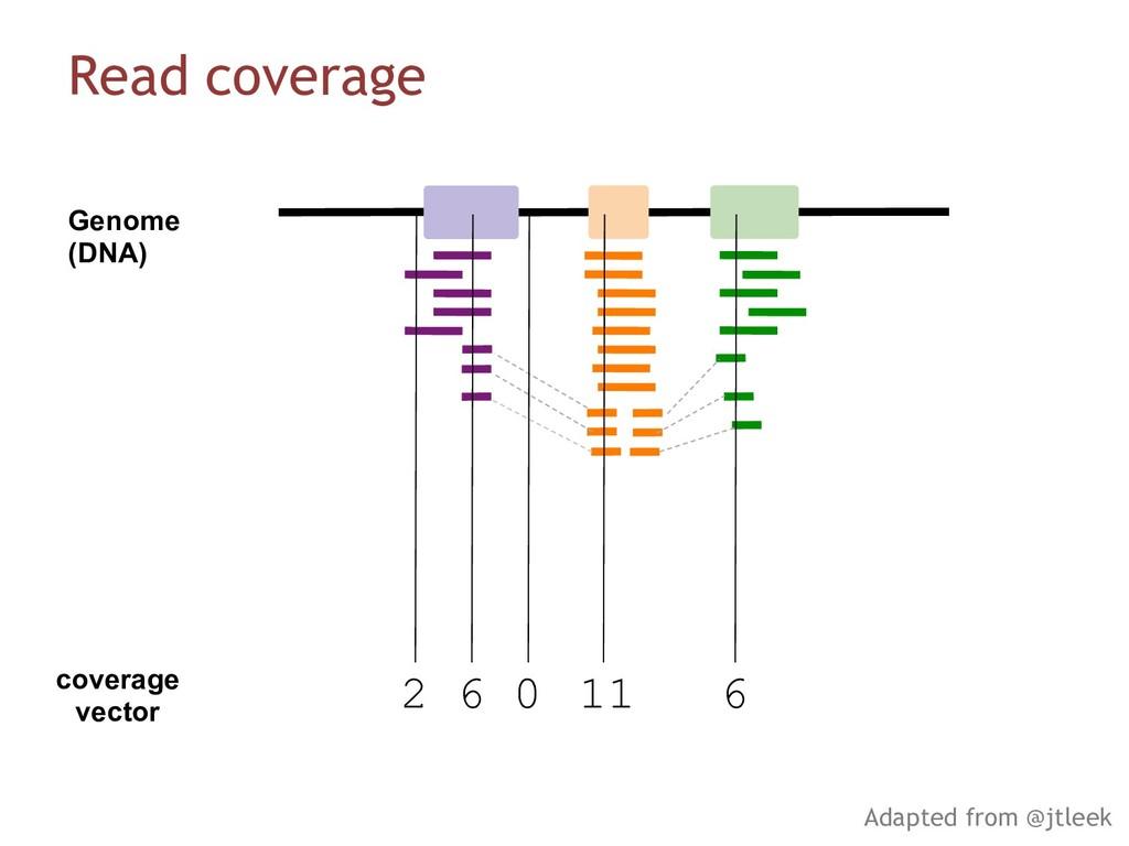 coverage vector 2 6 0 11 6 Genome (DNA) Read co...