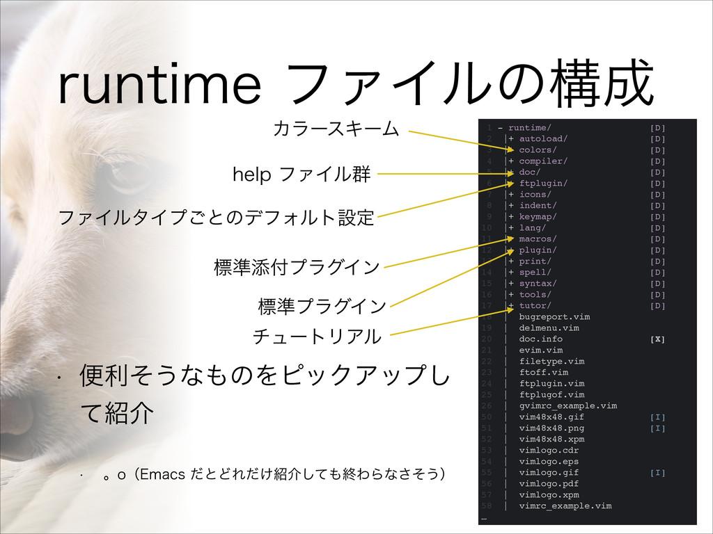 SVOUJNFϑΝΠϧͷߏ 1 - runtime/ [D]! 2  + autoload...