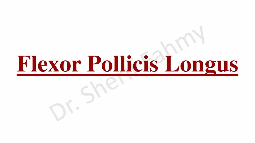 Flexor Pollicis Longus