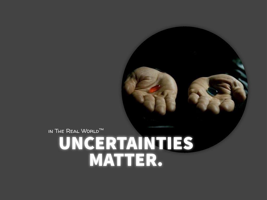 UNCERTAINTIES MATTER. in The Real Worldtm