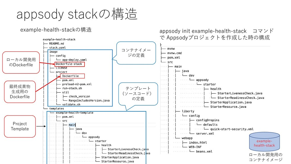 appsody stackの構造 appsody init example-health-st...