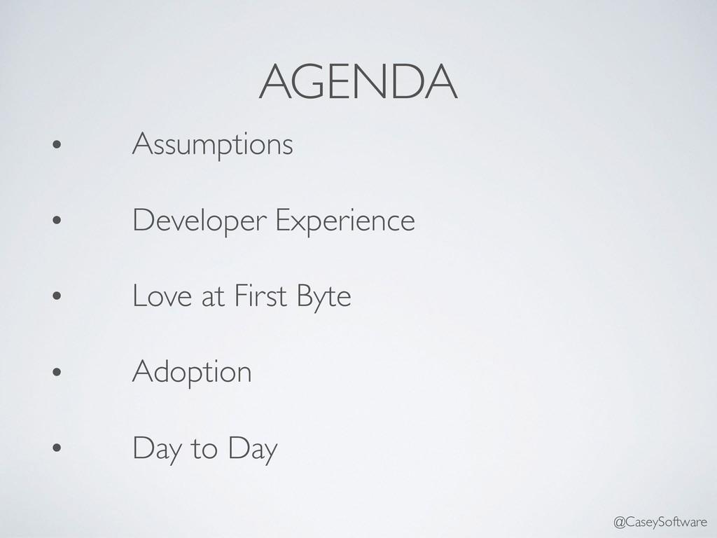 AGENDA • Assumptions • Developer Experience • L...