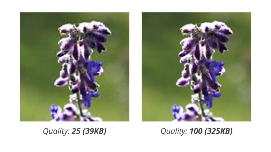JPEG Quality Quality: 25 (39KB) Quality: 100 (3...