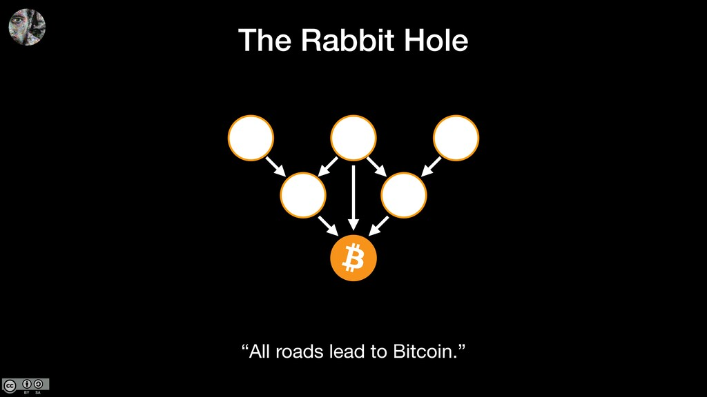 """The Rabbit Hole """"All roads lead to Bitcoin."""""""