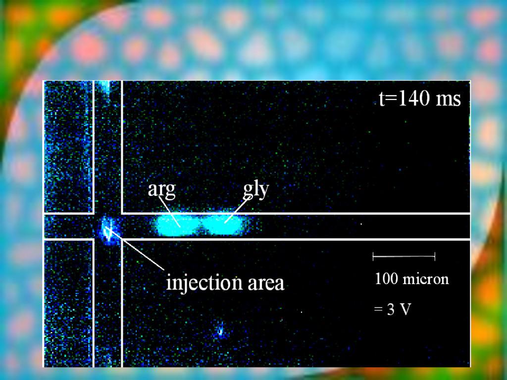 13-Nov-13 blinkermuh fluorescence [arb. units] ...