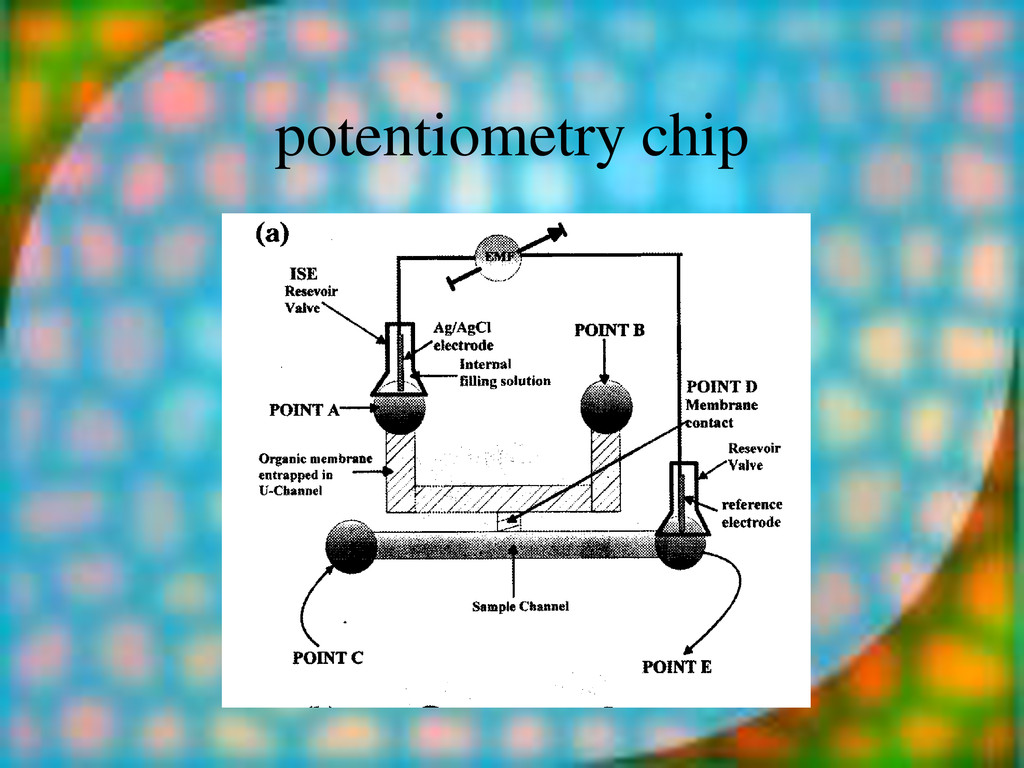 potentiometry chip glass microstructure with PD...