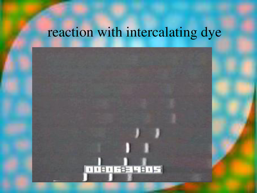 reaction with intercalating dye