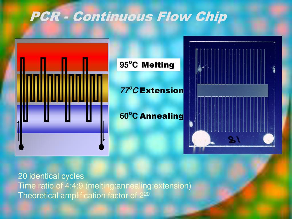 95oC Melting 77oC Extension 60oC Annealing PCR ...