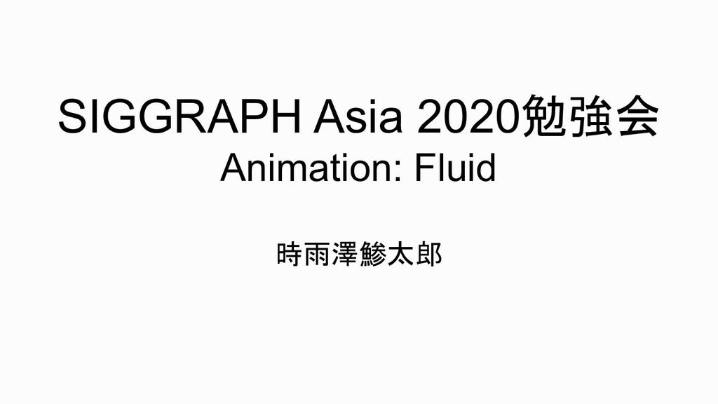 SIGGRAPH Asia 2020勉強会 Animation: Fluid 時雨澤鯵太郎