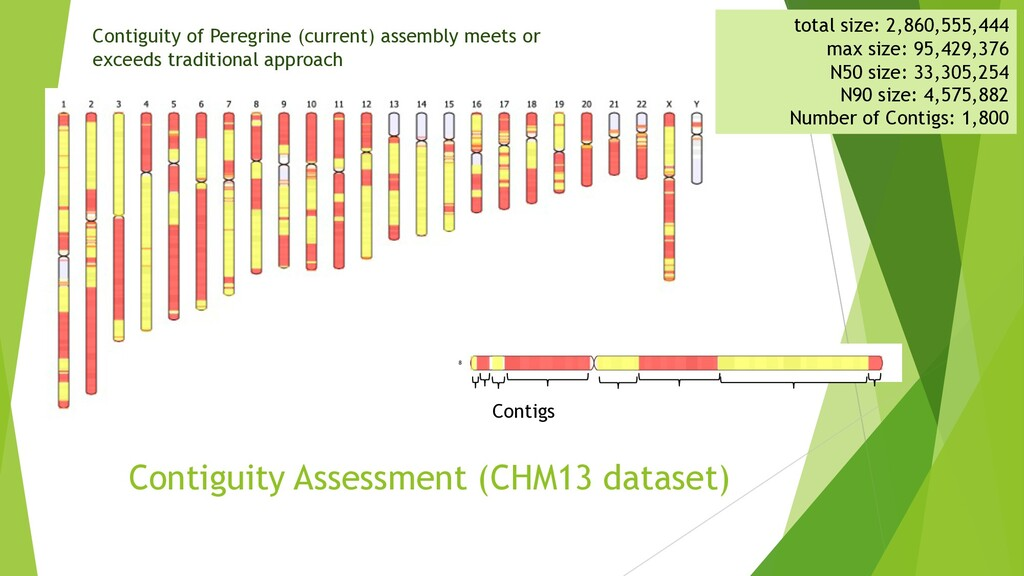 Contiguity Assessment (CHM13 dataset) Contiguit...