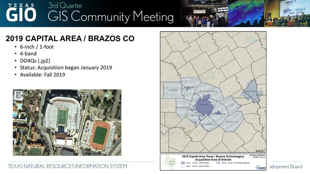 2019 CAPITAL AREA / BRAZOS CO • 6-inch / 1-foot...