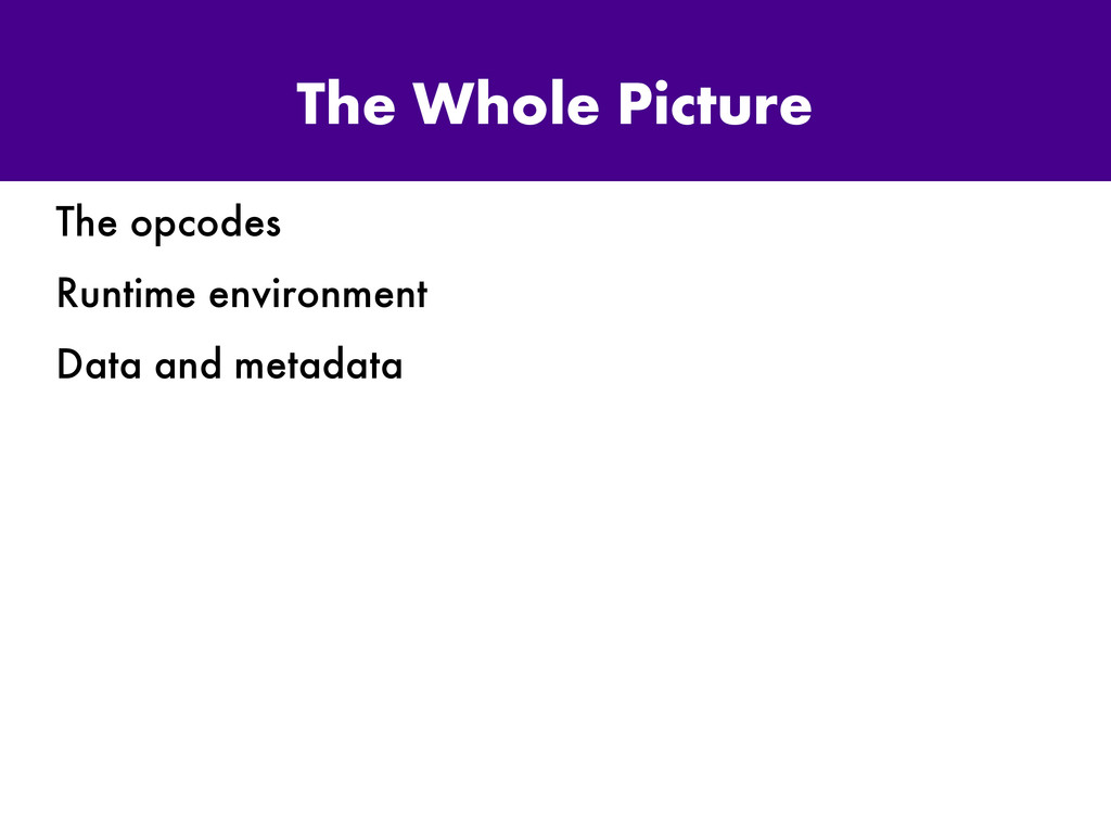 The Whole Picture The opcodes Runtime environme...