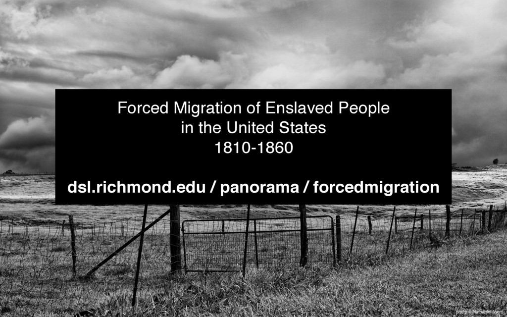 photo © Nathaniel Ayers Forced Migration of Ens...