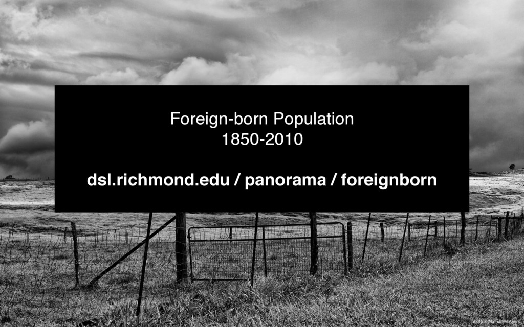 photo © Nathaniel Ayers Foreign-born Population...