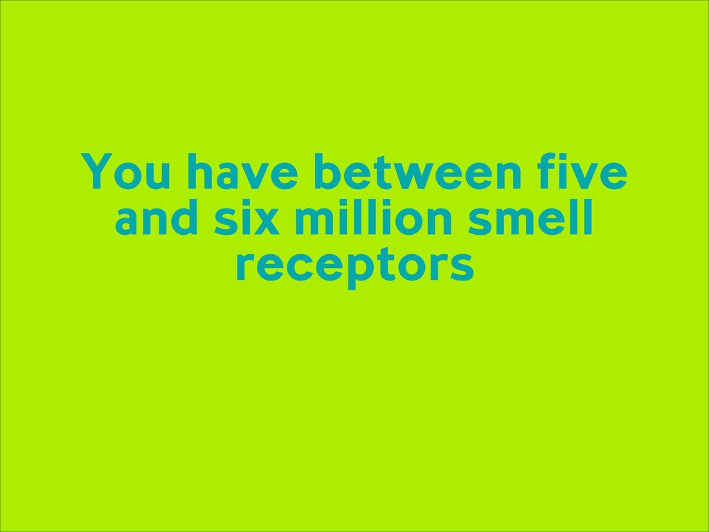 You have between five and six million smell rec...