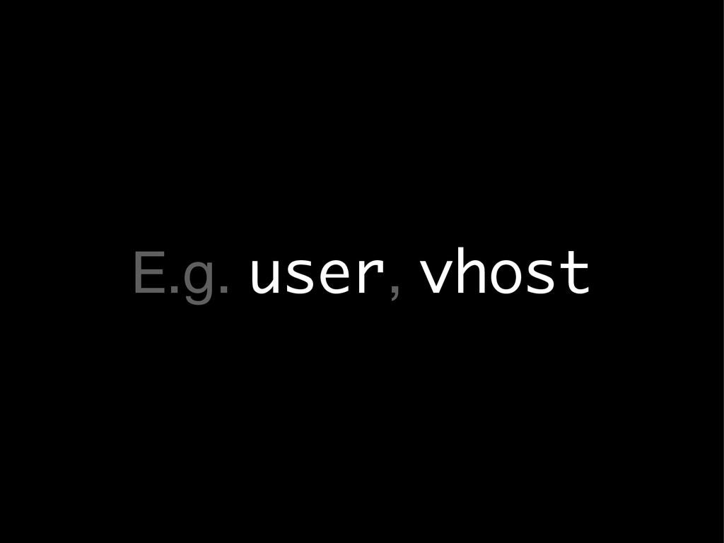 E.g. user, vhost