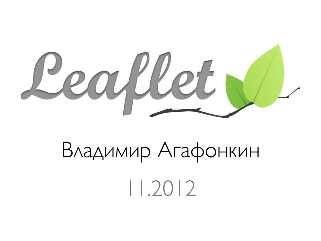 Владимир Агафонкин 11.2012
