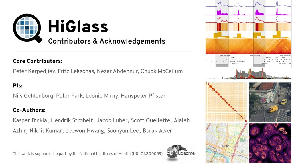 Contributors & Acknowledgements HiGlass Core Co...