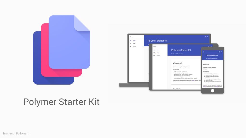 Polymer Starter Kit Images: Polymer.