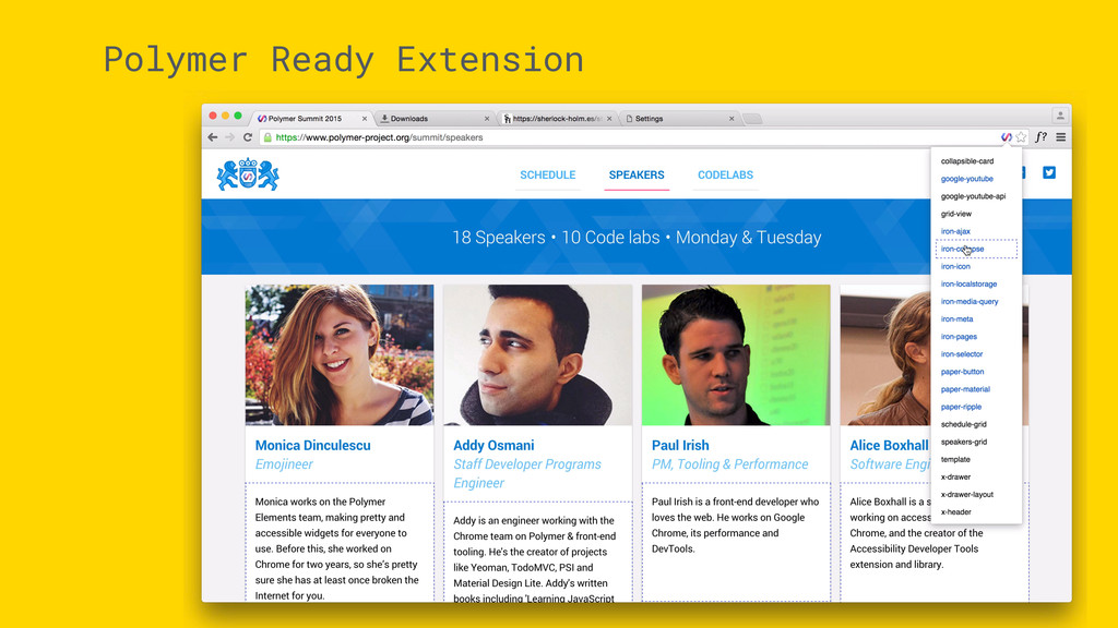 Polymer Ready Extension