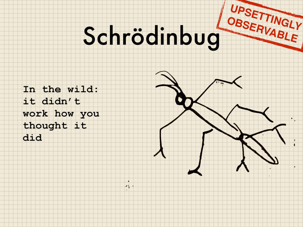 Schrödinbug In the wild: it didn't work how you...