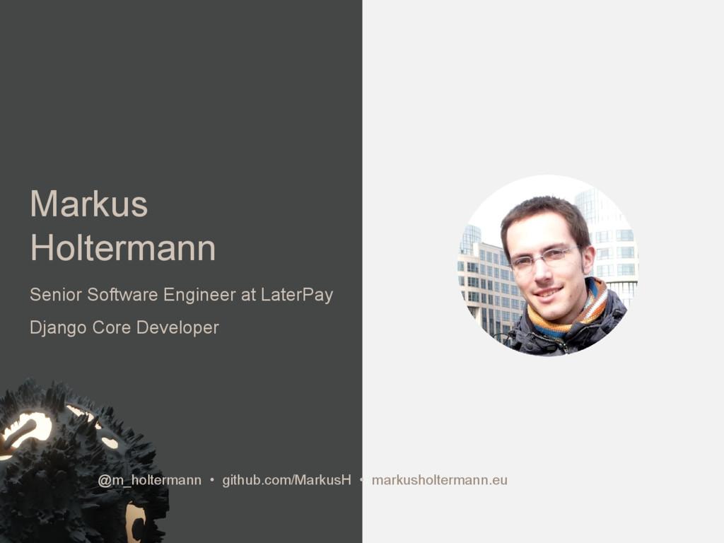 Markus Holtermann Senior Software Engineer at L...