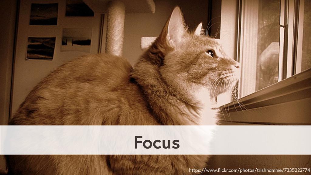 Focus https://www.flickr.com/photos/trishhamme/7...