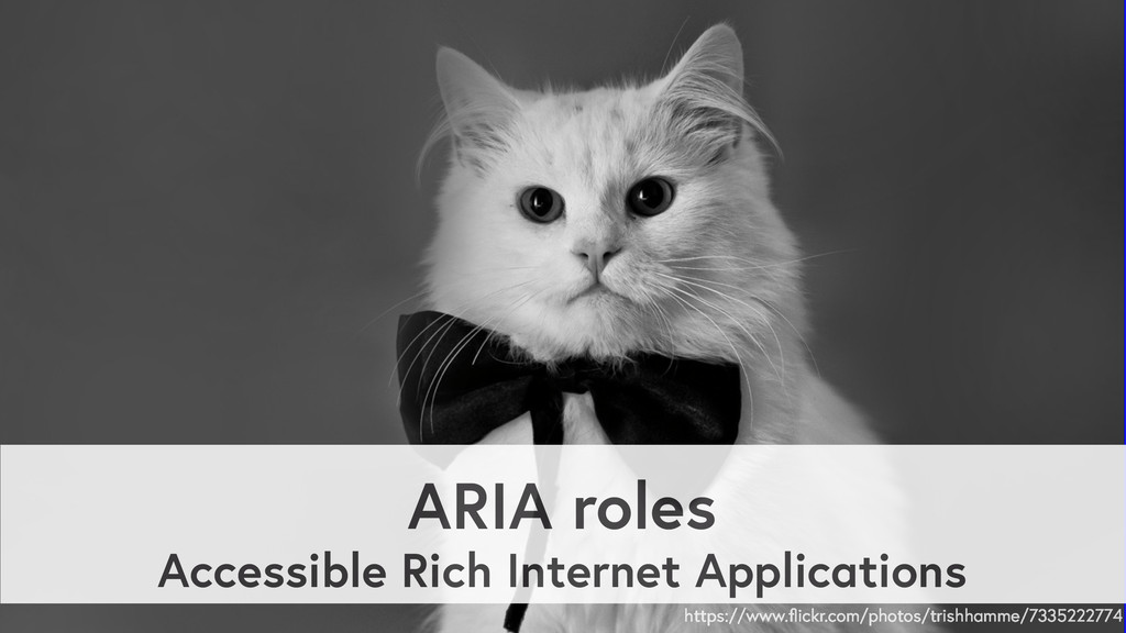 ARIA roles Accessible Rich Internet Application...