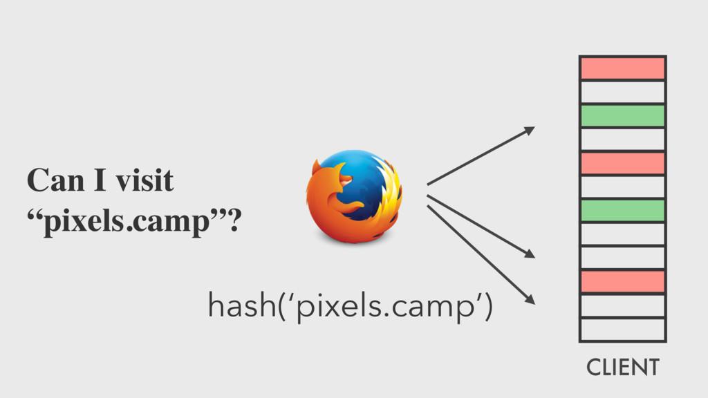 """hash('pixels.camp') Can I visit """"pixels.camp""""? ..."""