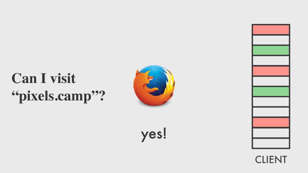 "yes! Can I visit ""pixels.camp""? CLIENT"