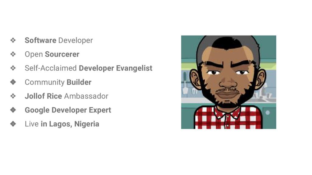 ❖ Software Developer ❖ Open Sourcerer ❖ Self-Ac...